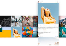 several ss into one instagram apk