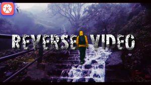 make reverse videos via kinemaster mod apk