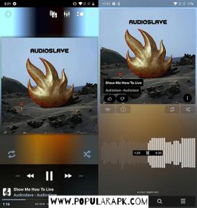 poweramp music player mod apk has redesigned skin.