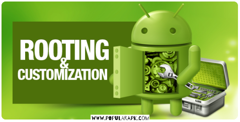 rooting and customization android devices