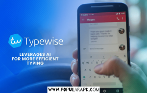 type wise use AI to enhance your learning curve and type suggestions.