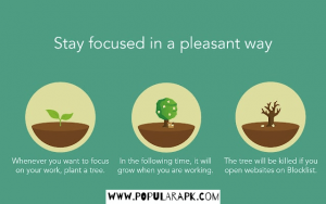 stay focused in a pleasant way